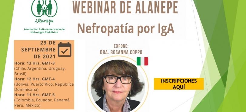 Webinar alanepe septiembre (2)